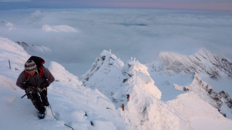 Berggrat